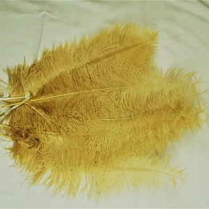 Feathers Gold