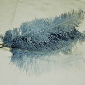 Feathers Silver